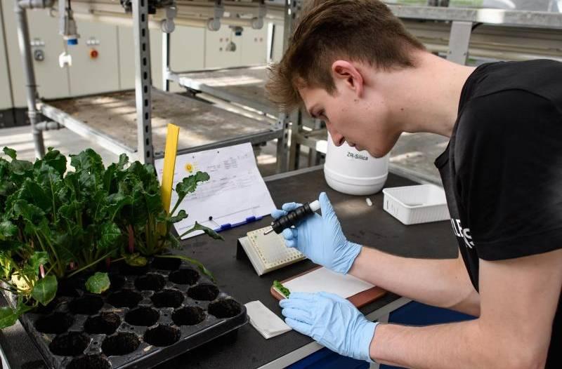 Pflanzentechnologen